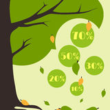 Листья карточки продажи осени Infographics падая от дерева Стоковая Фотография RF
