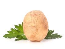 Листья картошки и петрушки Стоковая Фотография RF