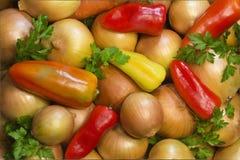 Листья красного, желтого, зеленого перца, лука и петрушки. Стоковые Фотографии RF