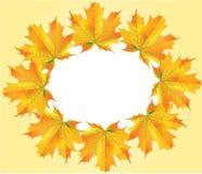 листья круга осени Стоковые Изображения RF