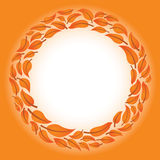 листья круга Стоковые Фотографии RF