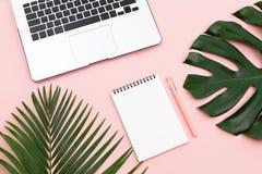 Листья ладони и monstera, компьтер-книжка, блокнот и ручка стоковое изображение rf