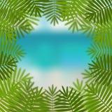 Листья ладони на предпосылке вида на море Стоковое Фото