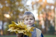 листья мальчика осени Стоковая Фотография RF