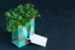 Листья мяты в сумке подарка стоковые изображения