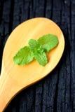 Листья мяты перца на белой ложке Стоковое Изображение