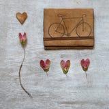 Листья на деревянной предпосылке Стоковая Фотография