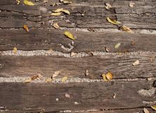 Листья на деревянной земле Стоковое Изображение RF