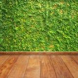 Листья на стене и стене древесины для предпосылки и интерьера Стоковое Изображение