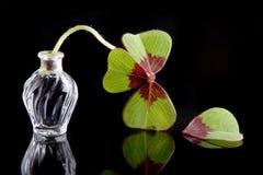 листья незадачливые Стоковое Фото