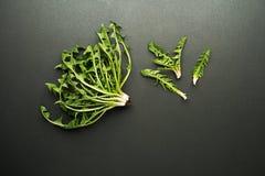 Листья одуванчика на черноте Стоковые Фото