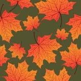 Листья осени, безшовная картина, предпосылка вектора Желтый оранжевый кленовый лист на зеленом цвете Для дизайна обоев Стоковое фото RF