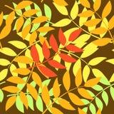 листья осени безшовные Стоковые Изображения
