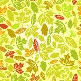 листья осени безшовные Стоковое Изображение