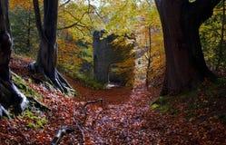 Листья осени вокруг викторианского сумасбродства Стоковые Фотографии RF