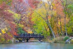 Листья осени в центральном парке Нью-Йорке Стоковое Фото