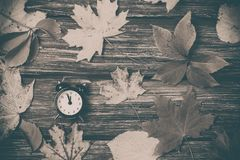 Листья осени и будильник на деревянном столе Стоковое Изображение RF