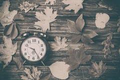 Листья осени и будильник на деревянном столе Стоковое Фото