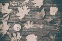 Листья осени и будильник Стоковые Изображения RF