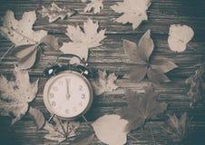 Листья осени и будильник Стоковые Фотографии RF
