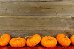 Листья осени и граница тыквы Стоковое Изображение