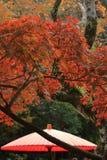 Листья осени и красный японский зонтик виска Kaizo Стоковые Изображения