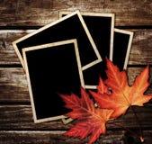 Листья осени и рамка фото Стоковая Фотография RF