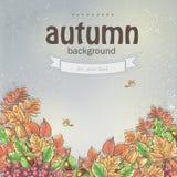 Листья осени и ягоды калины, жолудей и каштанов иллюстрация вектора