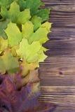 Листья осени над деревянной предпосылкой с космосом экземпляра Стоковые Фотографии RF