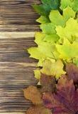 Листья осени над деревянной предпосылкой с космосом экземпляра Стоковая Фотография