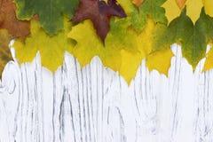 Листья осени над деревянной предпосылкой с космосом экземпляра Стоковое Фото