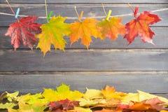 Листья осени на веревочке с штырями над деревянной предпосылкой Стоковые Изображения RF