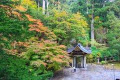 Листья осени на виске Taiyuin, Nikko Японии Стоковая Фотография