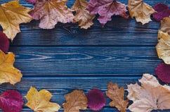 Листья осени на голубой деревянной предпосылке Стоковые Фотографии RF