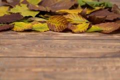 Листья осени на деревянной запачканной предпосылке Стоковые Фотографии RF