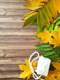 Листья осени на деревянной подарочной коробке шариков удивляют вертикаль Стоковое фото RF