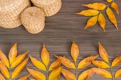 Листья осени на деревянной предпосылке стоковое изображение rf