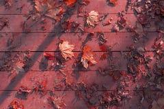 Листья осени на деревянной поверхности Стоковое Изображение RF