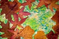 Листья осени на покрашенной предпосылке стоковое фото
