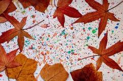 Листья осени на покрашенной предпосылке стоковое фото rf