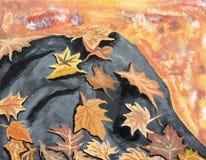 Листья осени на утесе Стоковые Изображения RF