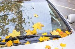 Листья осени покрыли автомобиль Стоковые Изображения RF