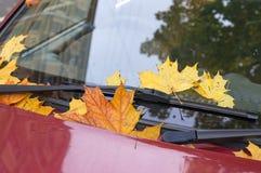 Листья осени покрыли автомобиль Стоковые Изображения