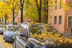 Листья осени покрыли автомобиль Стоковая Фотография