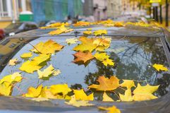 Листья осени покрыли автомобиль Стоковое фото RF