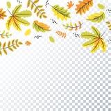 Листья осени предпосылка, фон, шаблон бесплатная иллюстрация