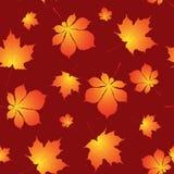 Листья осени предпосылка, безшовная картина Стоковое Фото