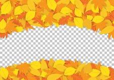 Листья осени рамки желтые иллюстрация штока