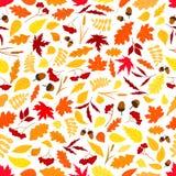 Листья осени с картиной жолудей безшовной иллюстрация штока