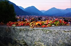 Листья осени с панорамным Стоковое фото RF